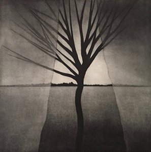 """Robert Kipniss, """"Landscape with curtains and crooked tree"""" (2016), mezzotint"""